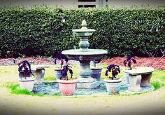Fountain Garden Print Starts at $0.49
