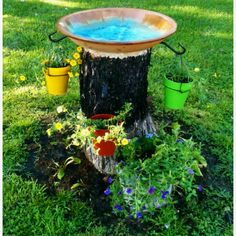Dadis had to chop down our tree and turned the stump into a bird bath/pot hanger!