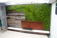 Outdoor fireplace with living wall.