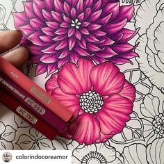 Blending Colored Pencils, Colored Pencil Artwork, Color Pencil Art, Color Blending, Coloring Book Art, Coloring Tips, Adult Coloring, Colored Pencil Tutorial, Colored Pencil Techniques