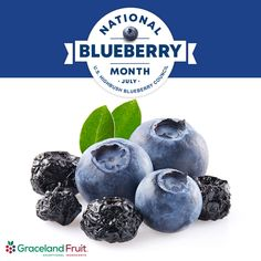 July is National Blueberry Month! In addition to tasting great, blueberries are also a source of 4 essential nutrients: 1. Fiber 2. Vitamin C 3. Vitamin K 4. Manganese Add the health of blueberries to your product line today! #wedeliverdelight *Data provided in large part by the National Blueberry Council Dried Blueberries, Vitamin K, Blueberry, Fiber, Fruit, Health, Berry, Health Care, Low Fiber Foods
