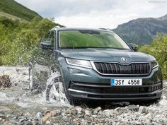 New Skoda Kodiaq shares its name with the big brown bear from Alaska.