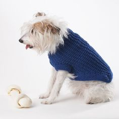 Explore our curated collection of free dog sweater patterns. Knit something special for your dog to keep them cozy and warm as the temperature drops. Crochet Dog Sweater Free Pattern, Knitting Patterns Free Dog, Dog Coat Pattern, Knit Dog Sweater, Knit Patterns, Knitting Ideas, Lion Brand Free Patterns, Small Dog Sweaters, Dog Furniture