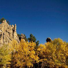 South Dakota: Custer State Park