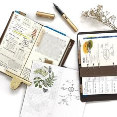 9/466: This year is all about embracing the mess, simplicity and natural green