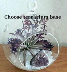 """Air Plant Terrarium Kit Large 6.5"""" Hanging Terrarium Crystal Terrarium DIY Terrarium Kit Amethyst Crystal Housewarming Gift Birthday Gift"""