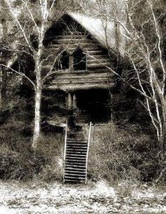 Old abandoned log home by florence