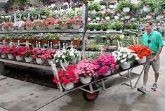 The Greenery Garden Centre Kelowna - Don't forget to purchase your landscape edging from YardProduct Flower Landscape, Landscape Edging, Garden Nursery, Plant Nursery, Natural Shampoo Recipes, Bouncy Hair, Flower Cart, Landscape Materials, Flower Nursery