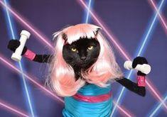 Cat Photographer Kate Funk Talks Costumes + Creativity on Etsy