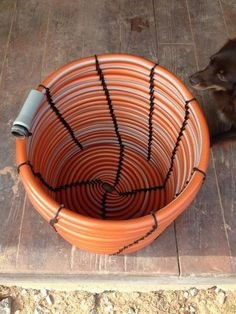 What do you do when your garden hose starts leaking? If the leak was in its end, then it's super easy to fix. But what if the leak was in the middle? Then you'll end up with too short pieces of that hose, which wouldn't be useful. So you would throw it away, right? Nope, there are many cool things you can make with this old leaking hose. You can use these items you make in your garden or in your home as well. Here are some of the best ways to repurpose your old garden hoses into g... Grow Your Own, Aloe Vera, Chair, Plants, Garden, Furniture, Home Decor, Recliner, Homemade Home Decor