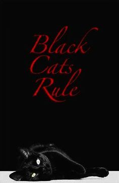 Black Cats Rule do not believe or perpetrate the myths associated with black cats. they are misunderstood and therefore; targets for violence&animal cruelty. STOP associating them with Halloween and witches!
