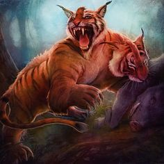 2 Headed Tiger by pinkhavok.deviantart.com on @deviantART
