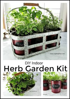 Make this Easy and Inexpensive DIY Indoor Herb Garden Kit from recycled cans. #gardening #herbgarden #indoorplants #diyproject #MyTurnforUs