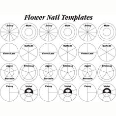 royal icing flower templates - Google Search