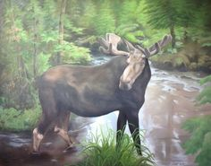 Fine Art by Brenda L. Close Encounters, Joy Of Life, Oil On Canvas, Moose Art, Original Paintings, United States, Horses, In This Moment, Fine Art