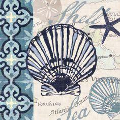 Canvas Seashell Wall Art - Bed Bath & Beyond Nautical Pictures, Deco Marine, Nautical Art, Nautical Design, Beach Cottage Decor, Coastal Art, Illustrations, Strand, Find Art