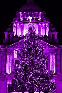 purple christmas things | Purple Christmas Tree | PURPLE Shades of Things