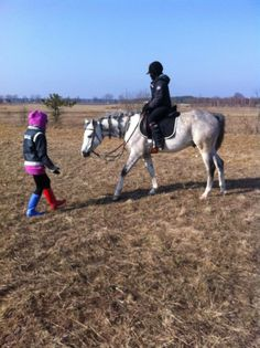 Relax, Horses, Arabian Horse, Child, Friend, Arpaco