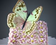 Butterfly cake from Ms B's Cakery.