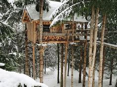 Les Ecotagnes Treehouse. A truly magical treehouse built on firs in the French Alps.