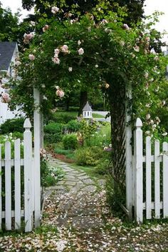 white picket fence and arbor framing birdhouse