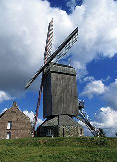 Nord-Moulin à vent, Boeschepe