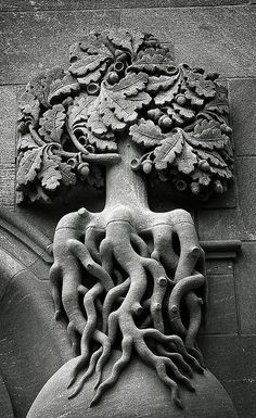 Oak architectural detail in St. Louis Missouri, andyconniecox on flickr