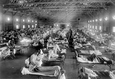 Flu Outbreak, Flu Epidemic, Influenza Virus, World War I, World History, Family History, Texas History, Emergency Hospital, Ville New York