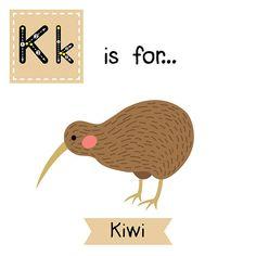 Letter K tracing. Kiwi bird. – Vektorgrafik
