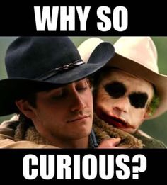 Brokeback Mountain, Heather Ledger Joker Memes