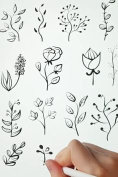 Flower Art Drawing, Flower Sketches, Floral Drawing, Doodle Flowers, Floral Doodle, Flower Doodles, Art Drawings For Kids, Art Drawings Sketches, Easy Drawings