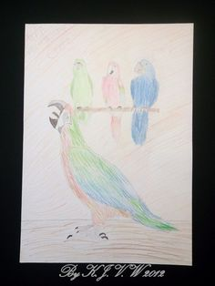 [quartet Parrots] made with colour pencils.