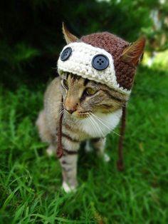 5039f5eb466 Aviator Cat Hat Pattern Aviator Hat for Cats Crochet Pattern   sweatersforcats Dog Costumes
