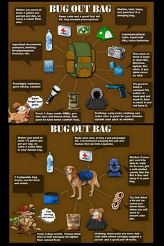 WE ARE SAFE!!~  prepping safety  camping bug out bag kits dog and human