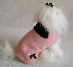 Clothes and apparel for small dogs,tiny dogs, and teacup dogs.  THIS BOARD..is full of pictures of puppy clothes..great ideas for diy stuff..http://www.pinterest.com/lollipopn/doggie-stuff/