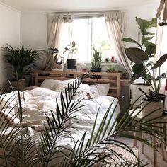 Plantroom/bedroom