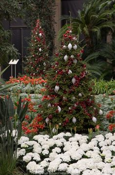 Christmas in the Conservatory at Longwood Gardens © 2013 Patty Hankins