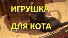 Попытка приучить кота к когтеточке дубль 2 или задача по уничтожению игр...