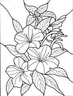 dibujos para colorear de flores exoticas   Pinteres
