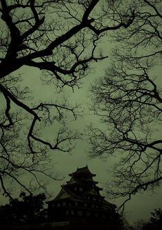 """Okayama Castle""  #japan #okayama"