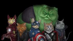 The Avengers Re-imagined asCats - GeekTyrant