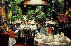 """blue-elephant Oui, il existe bien une """"jungle"""" en plein 11ème, une forêt de bambou à côté de Bastille. Un super décor, et de belles assiettes. Attention aux plats épicés, ça rigole pas. Adresse : 43/45 rue de la Roquette 75011 Paris - www.versionvoyages.fr - Version Voyages"""