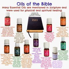 "What are essential oils? They are the  ""Life-Blood"" of plants - the ""essence"" that contains the plant's  life-force. They are composed of t..."
