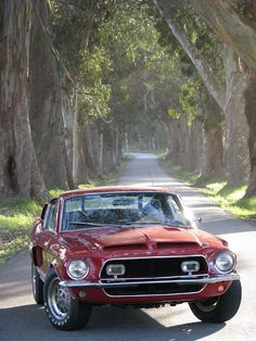 1968 Ford Mustang fastback Shelby GT