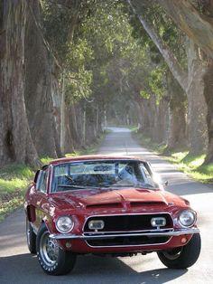 Shelby 1968 shelbi, mustangs, mustang cobra, mustang salli, garag, ford mustang, shelbi mustang, mi carro, auto