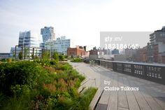 Stock-Fotografie: Chelsea Grasslands The High Line public park