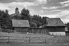 bwstock.photography - photo   free download black and white photos  //  #village #castle Black White Photos, Black And White, Free Black, Public Domain, Castle, House Styles, Photography, Photograph, Black N White