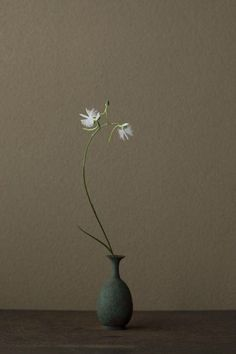 """""""Practitioners of Ikebana use their art to connect humanity with nature, and to find harmony within the connection. Traditionally, arranging the elements of the design is done in silence to allow the artist to meditate on the process. This custom goes back many generations, to samurai warriors who were often trained in Ikebana to strengthen their control and inner peace."""" (Ikebana by Toshiro Kawase)"""