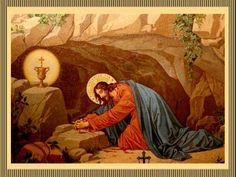 ¡Señor y Dios mío, seas siempre bendito y alabado Jesús Sacramentado!, en Tu presencia estoy, Señor de Señores, como un hermano delante...