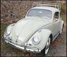 1960 Volkswagen Beetle   #Mecum #Kissimmee #WhereTheCarsAre